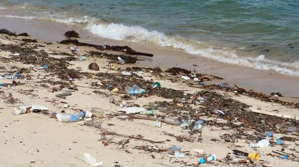 Marine Trash at East Coast Park Beach