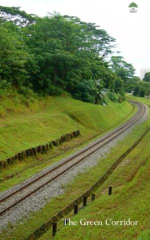 The-Green-Corridor-1