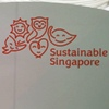 My vision of a sustainable future for Singapore in 2065
