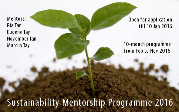 Sustainability Mentorship Programme 2016