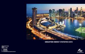 Singapore Energy Statistics 2015 (cover)